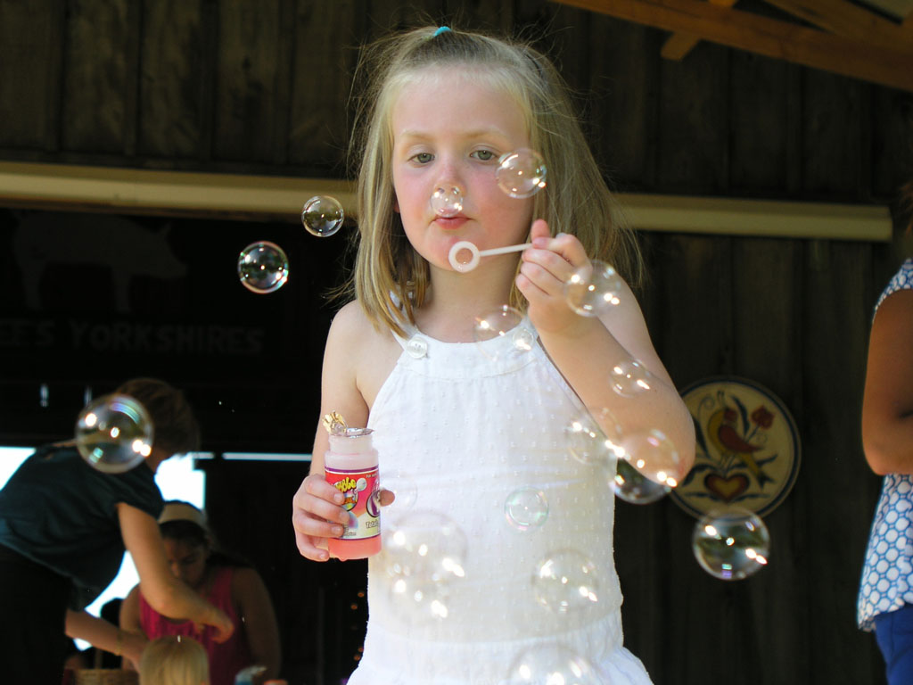Blowing Bubbles Original